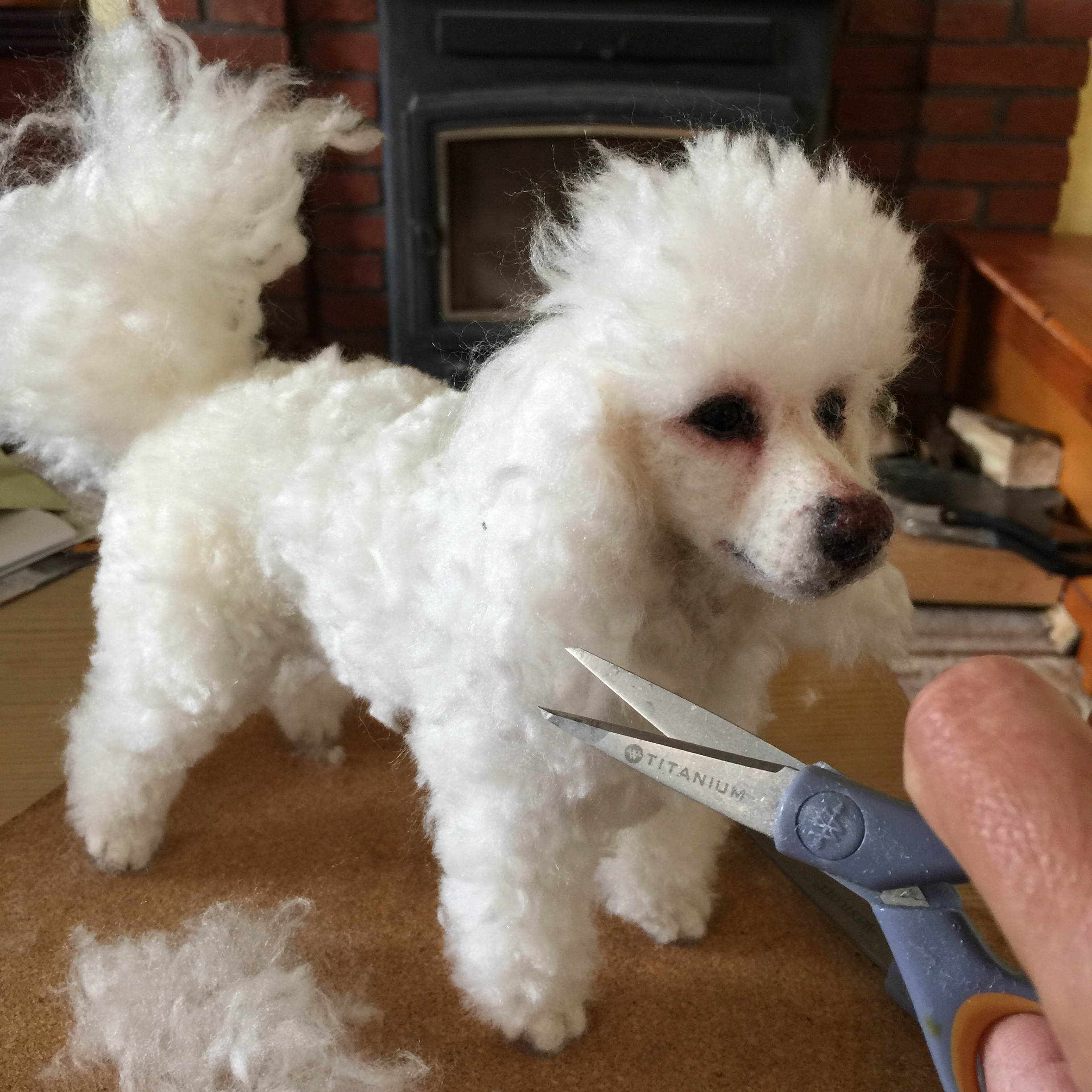 ChicktinCreations.Poodle-trim