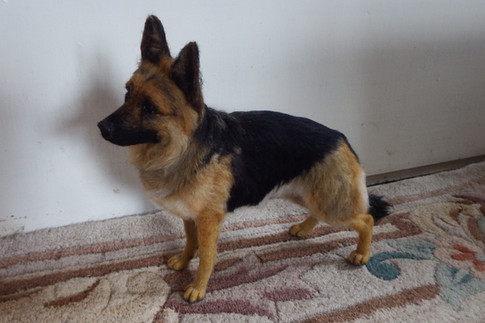 chicktincreations.gsd