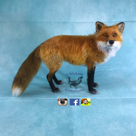 Fox from side