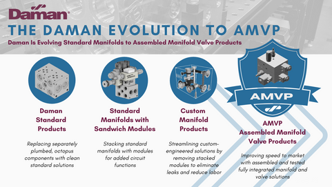 Daman Evolution of A Manifold (8).png