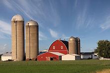 Modern Family Farm.jpg