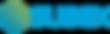 Subex logo.png
