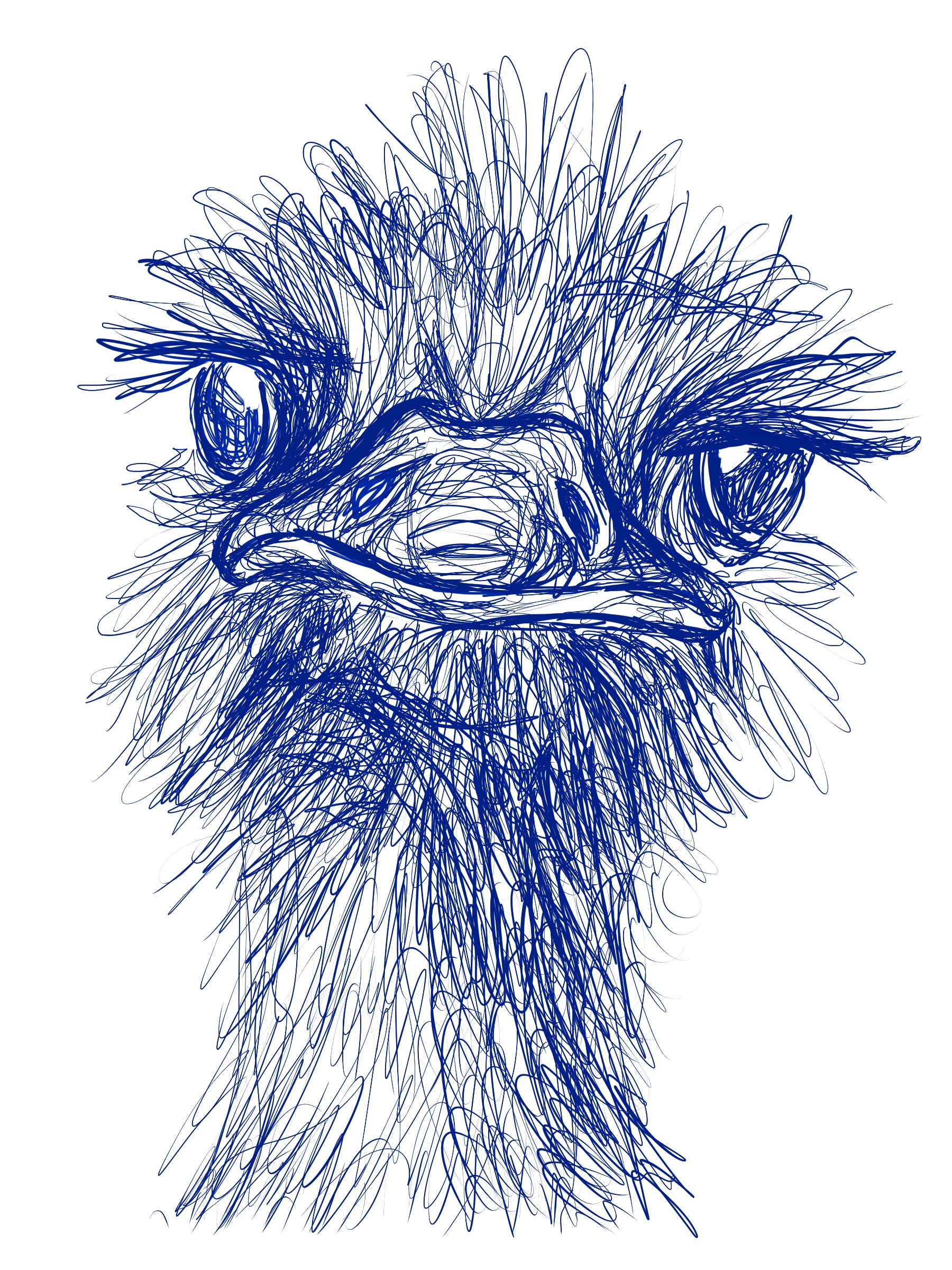 Emu You