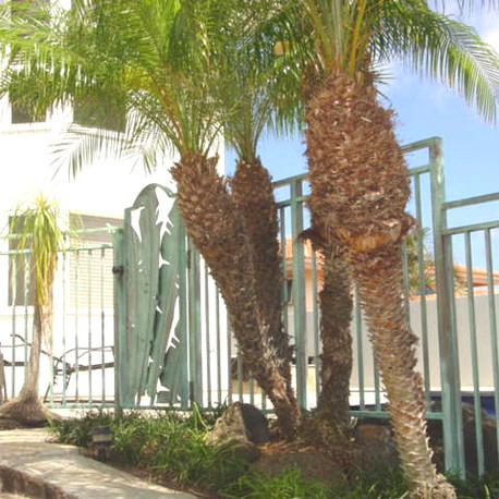 Galvanized steel gates and fencing