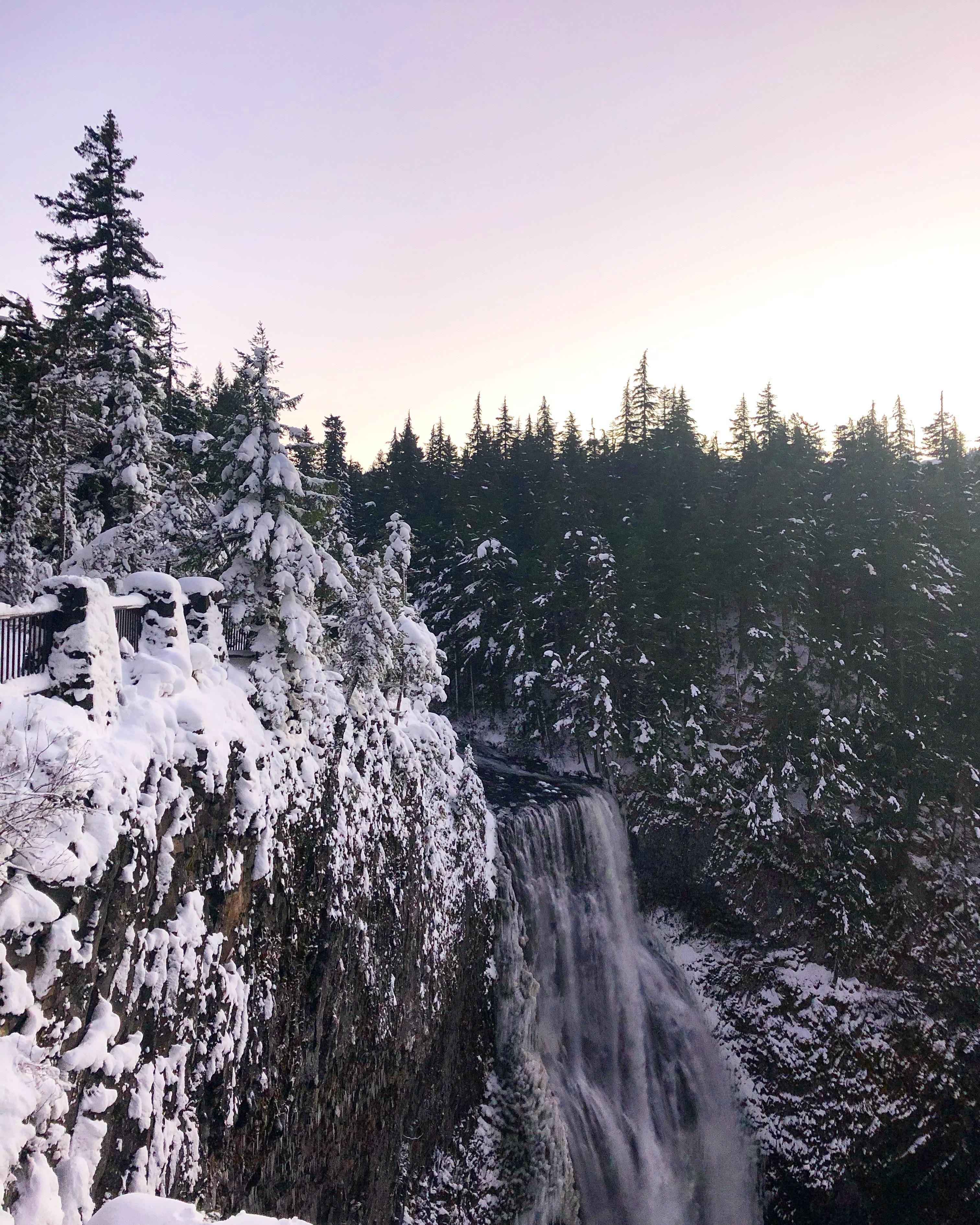 Salt Creek Falls Snowshoeing