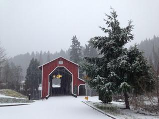 A winter wonderland!