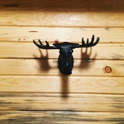 Moose Coat hanger