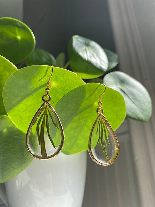 Golden Goddess Wild Mugwort Earrings