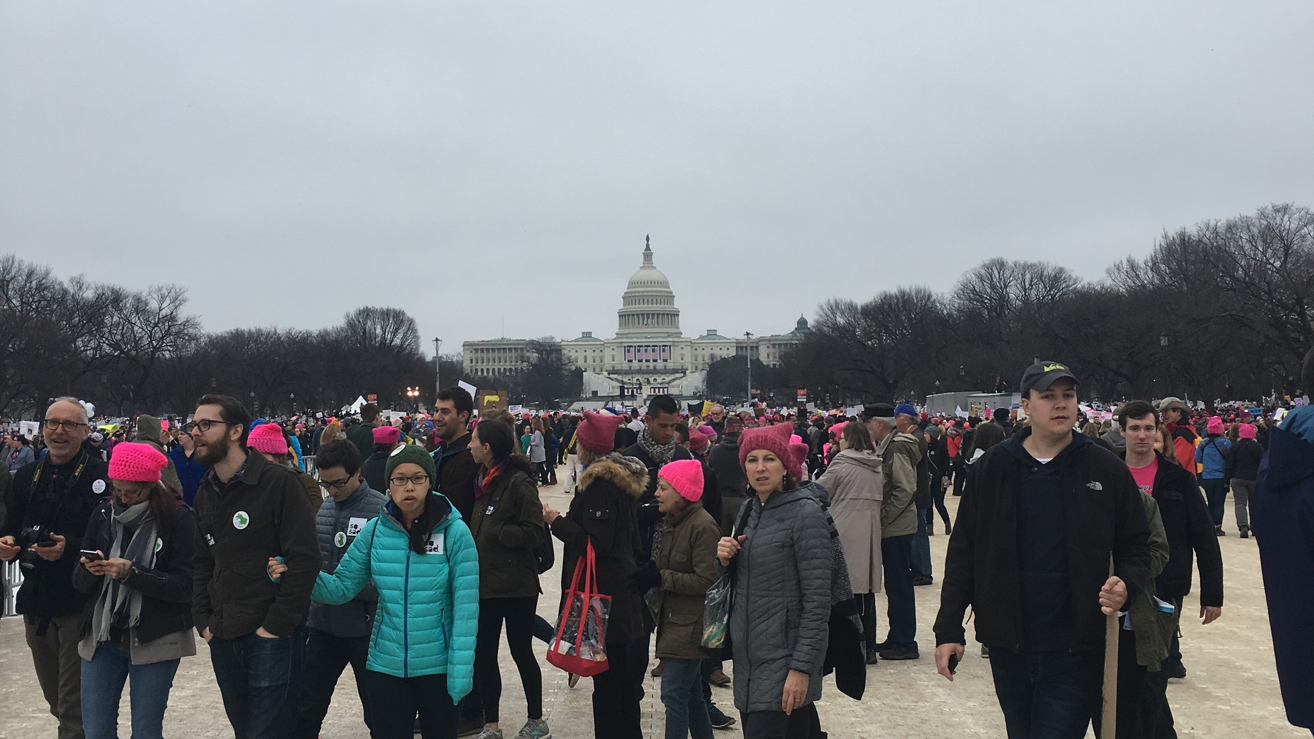 Women's March DC