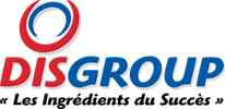 logo_disgroup.png