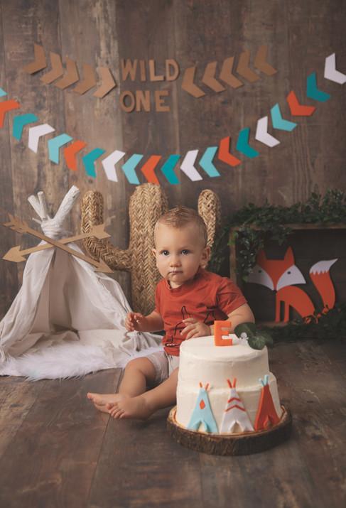 Séance SmashCake 1er anniversaire de bébé sur le thème Tipi, renard