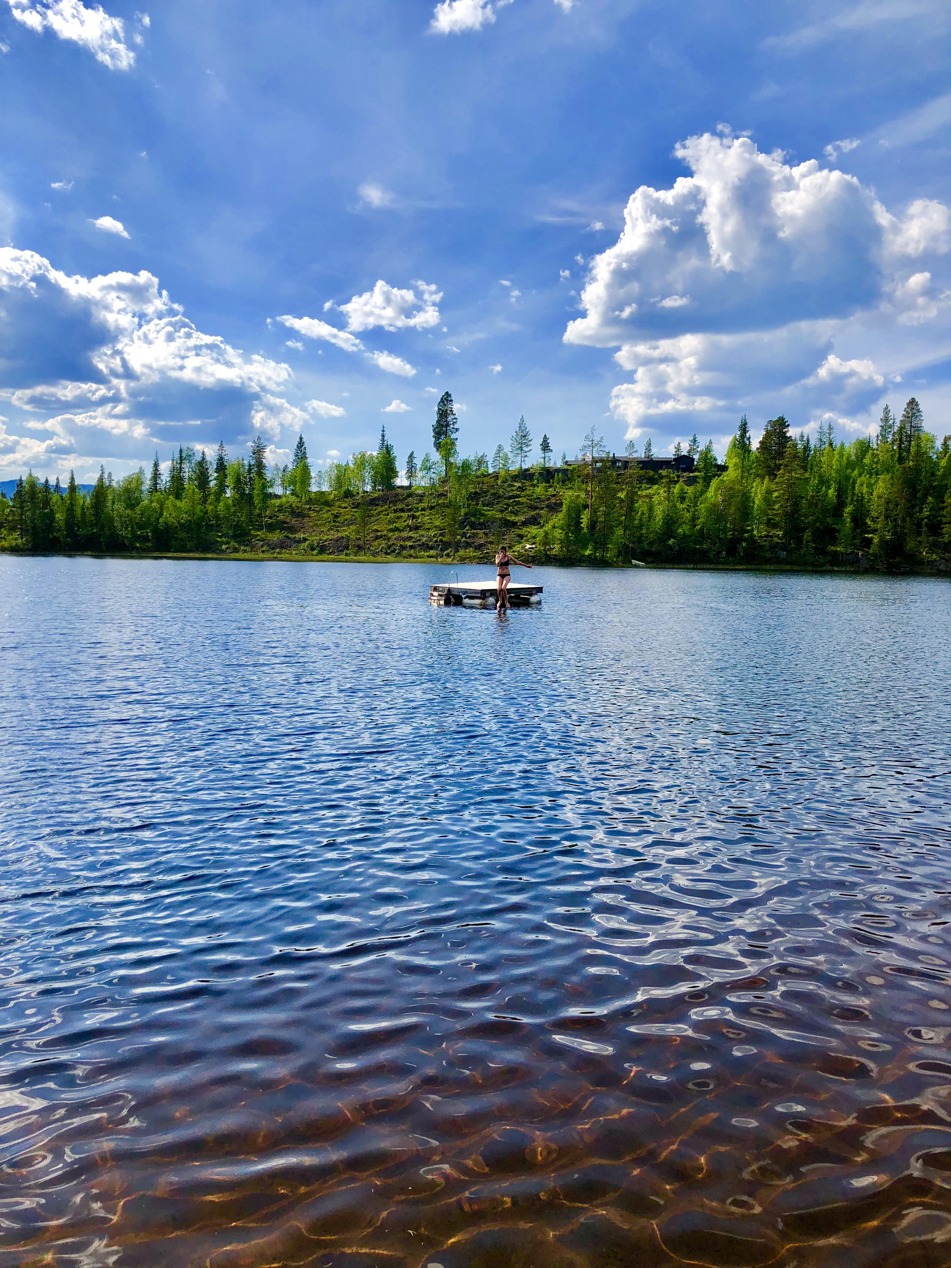Sommer på Kvisle Skog