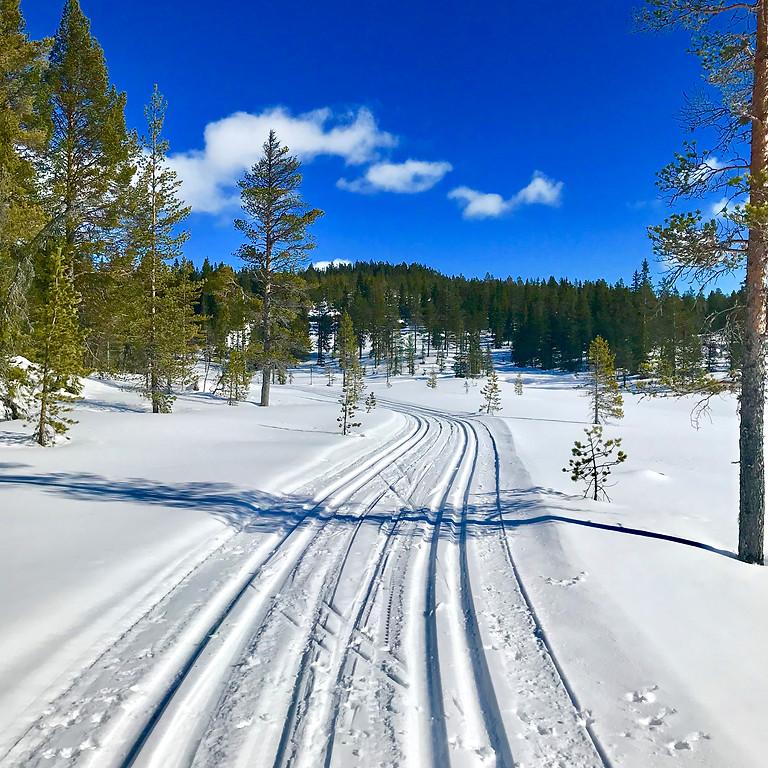 Påskeskirenn Kvisle Skog 2019