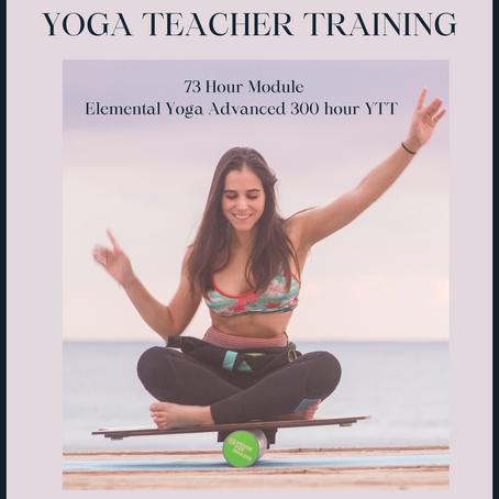Therapeutic and Adaptive Yoga Teacher Training Module