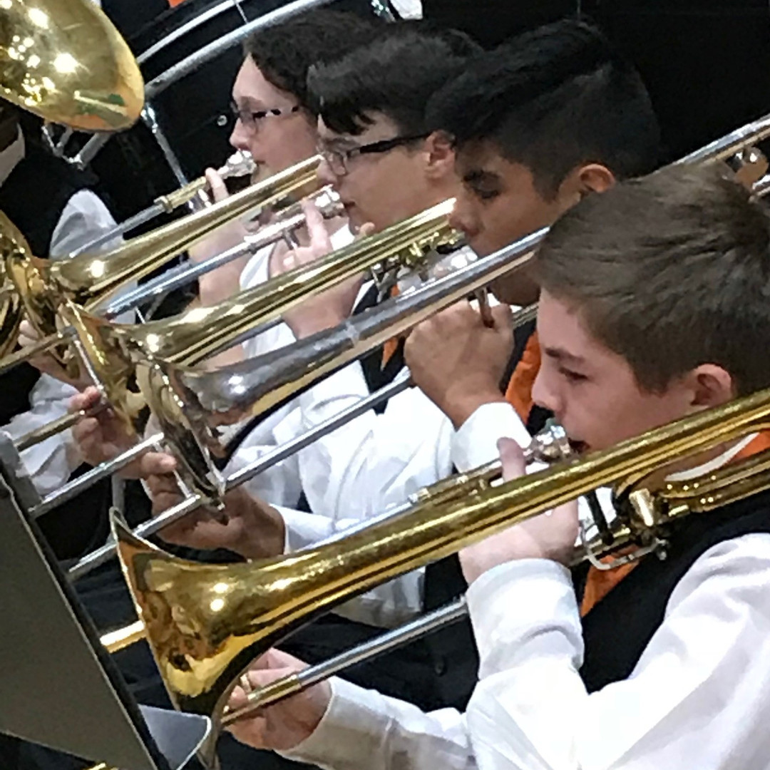 vets lms band closeup.jpg