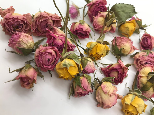 Dried Pink and Yellow Roses