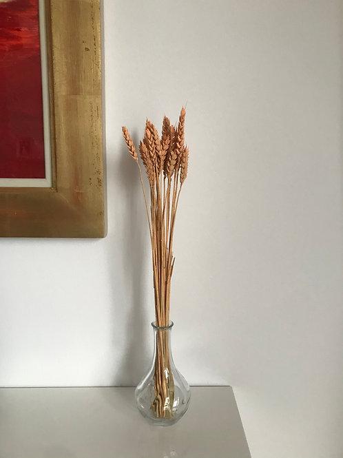 SALE Single Bloom Wheat