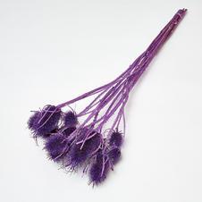 Marsh Thistles Purple
