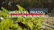 Cultura y comunicación creativa. La tierra y la huerta del Villa del Prado