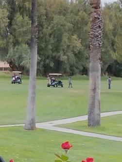Golf Day 15.jpg