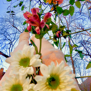 Susan Payne My Garden grew Me 2020.jpg