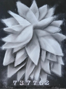 Shane Guffogg, 737762Pastel on paper15 x 11.25 in. or (38.1 x 28.5 cm)  2020