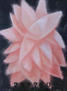 Shane Guffogg, 737760Pastel on paper15 x 11.25 in. or (38.1 x 28.5 cm) 2020