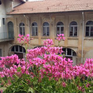 Casa Regis, courtyard