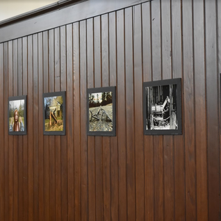 Exhibit held at City Hall, Sulphur Springs