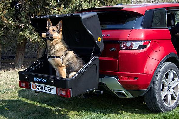 Portaperros Towbox v1