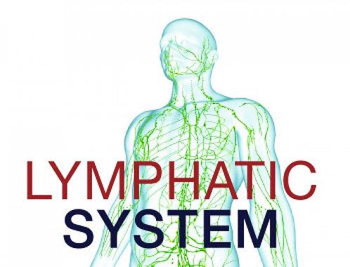 7 -  60 Minutes - Traditional Lymphatic Drainage Massage