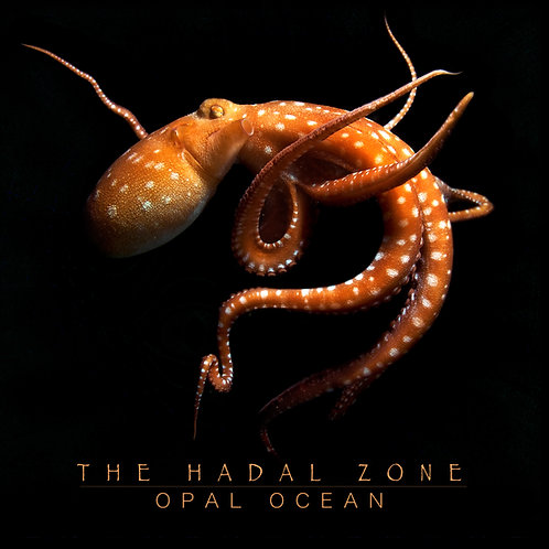 (Pre Order) The Hadal Zone (Physical CD)
