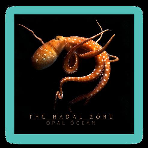 Opal-Ocean-Hadle-Zone-One-page-EPK-2020.
