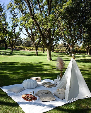 Picnicking amongst vineyards with a wine