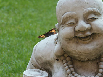 buddha butterfly.JPG