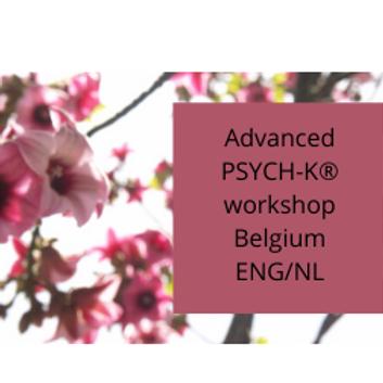 Belgium Advanced Workshop PSYCH-K® English / Nederlands
