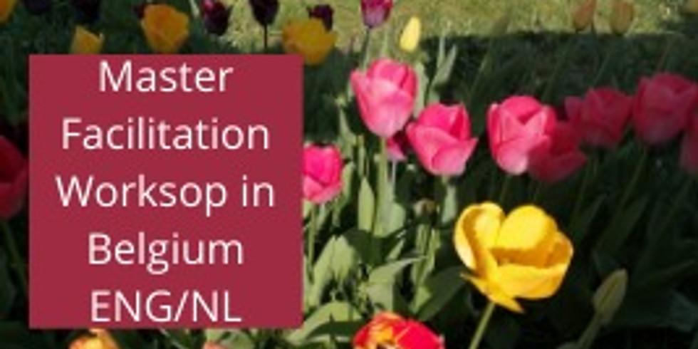 Belgium Master Facilitation Workshop ENG/NL