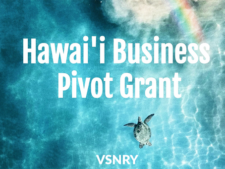 Top 5 Ways To Use The Hawai'i Business Pivot Grant To Get Your Business Back On Track!