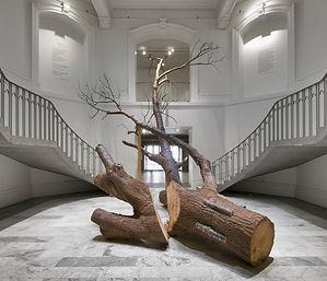 "Gabriela Albergaria, ""Blenheim and 29th"", 2008, Vancouver Artgallery, Canada. © Henri Robideau"