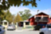 front-tree.jpg