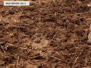 Muddy path on horse farm