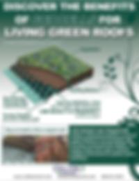 GreenRoof.PNG