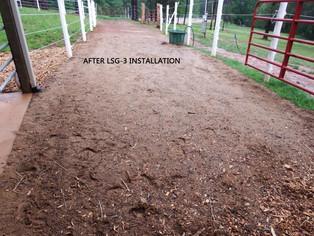 LSG for mud management for horse farm