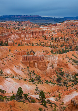 Felsformationen im Bryce Canyon
