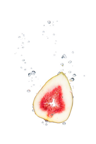 Fig in the water with air bubbles