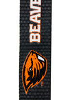 NCAA Oregon Beavers Carabiner Lanyard