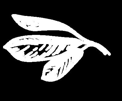 Startseite_Baum_02_Blatt_02.png