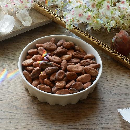 Unfermentierte Kakaobohnen