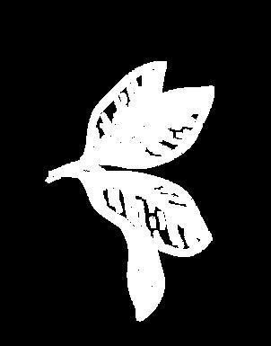Startseite_Baum_02_Blatt_01.png