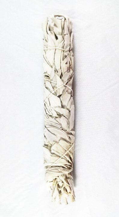 White Sage (Medium) 3-Pack